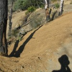 Coir fabric erosion control